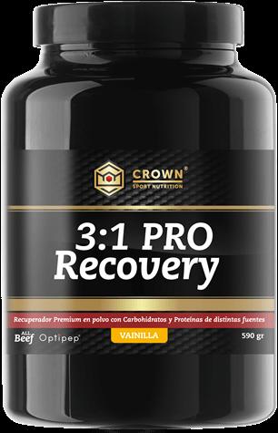 pro-recoverygrande
